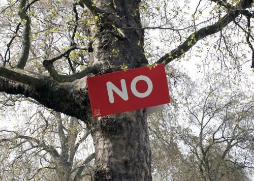 NO_tree2