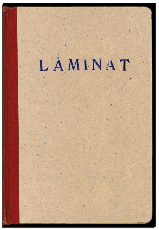 laminat_front_1